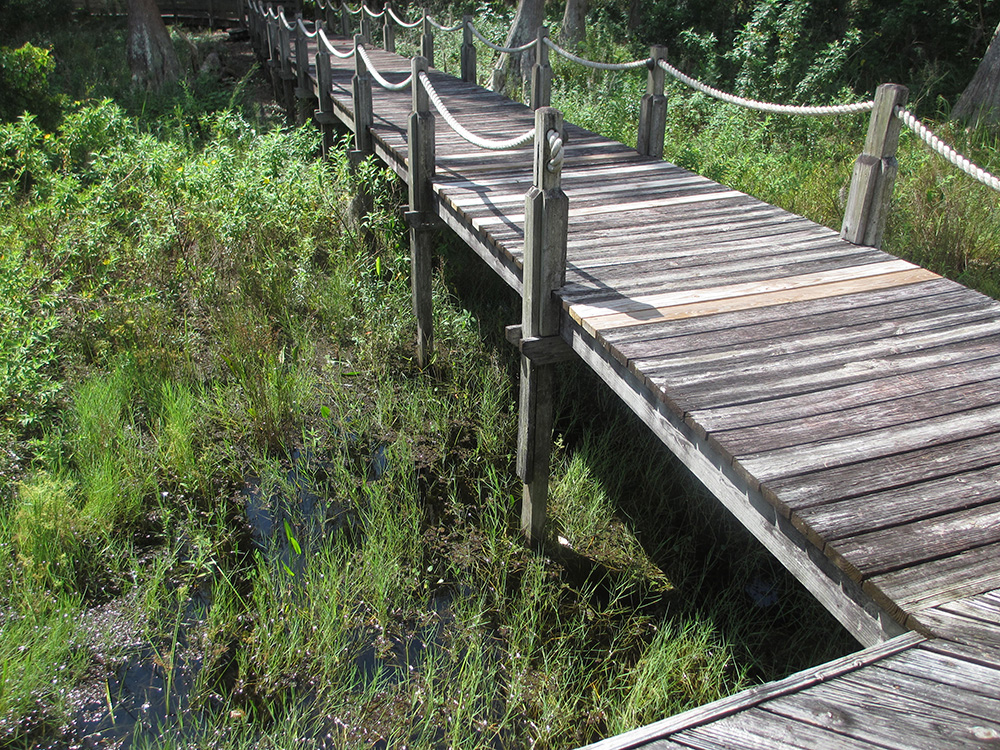 Boardwalk Repair