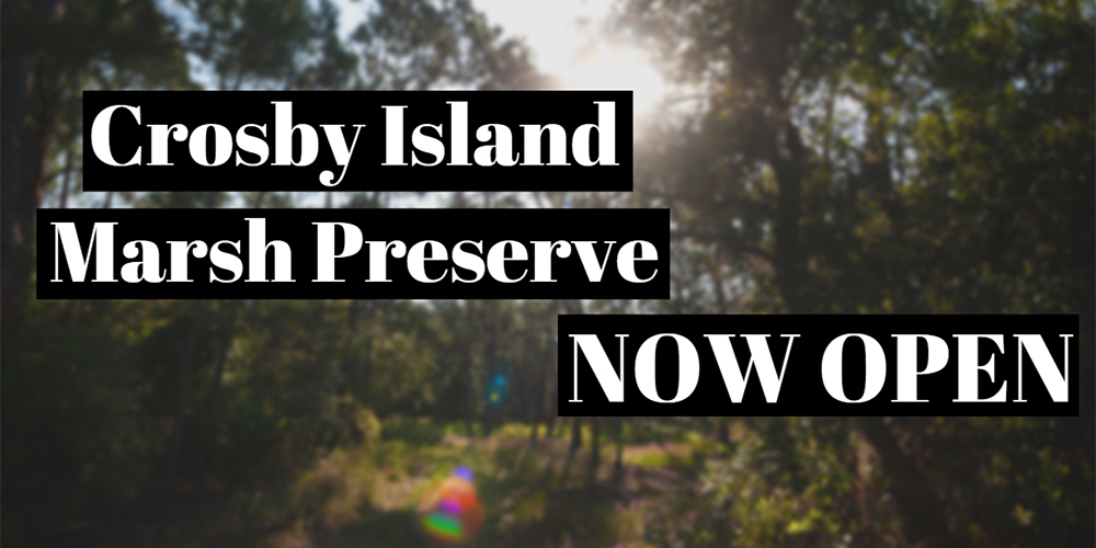 crosby island marsh preserve
