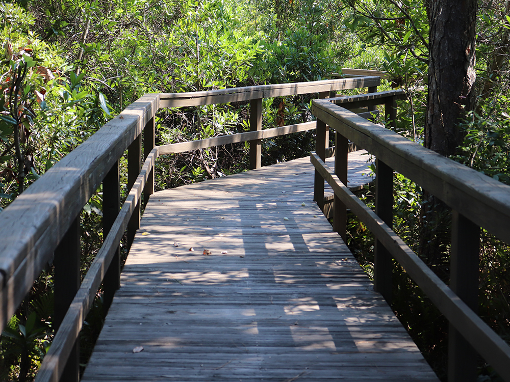 wooden boardwalk construction services