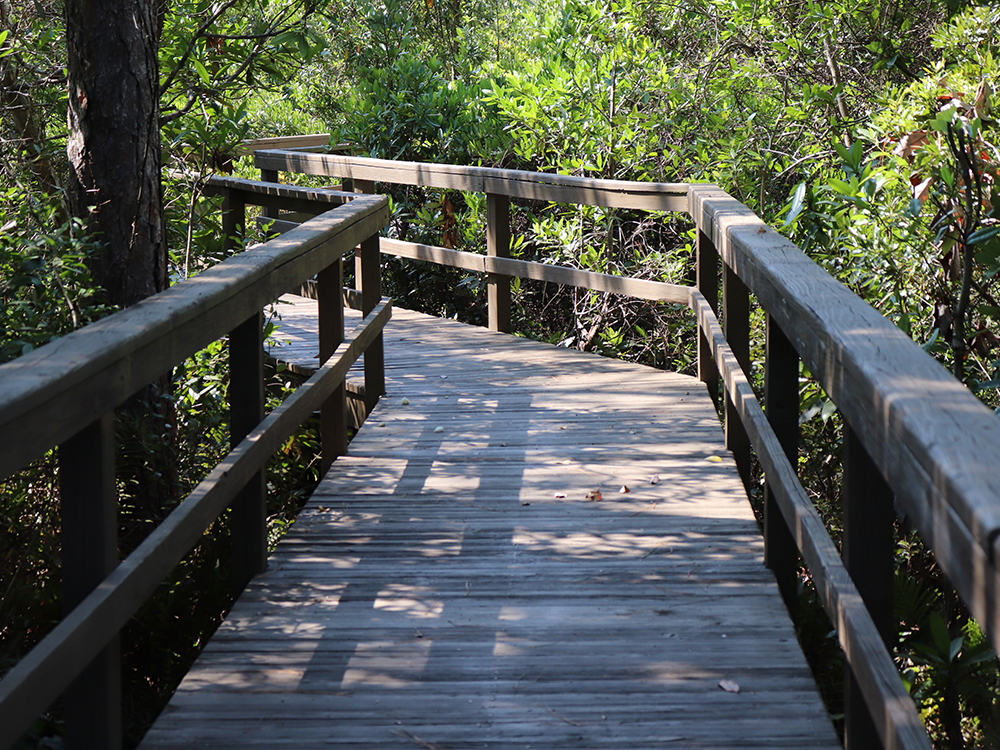 boardwalk builders and contractors
