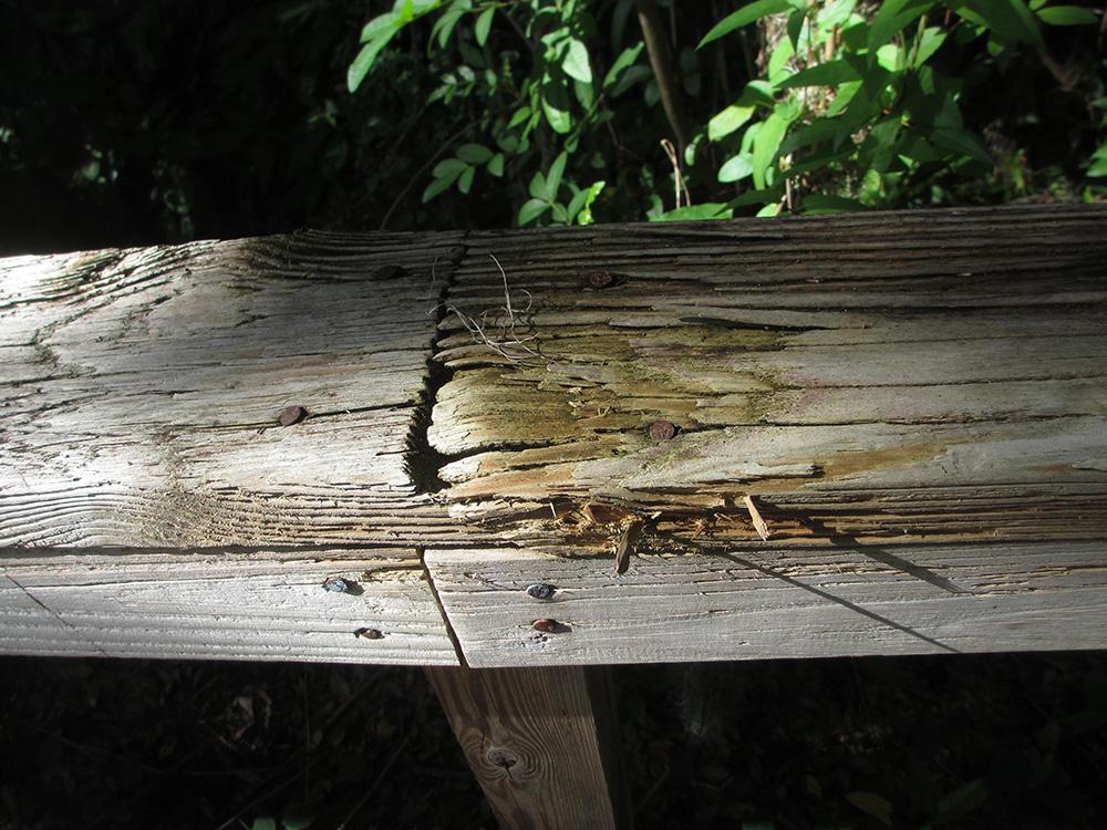 boardwalk-railing-repair