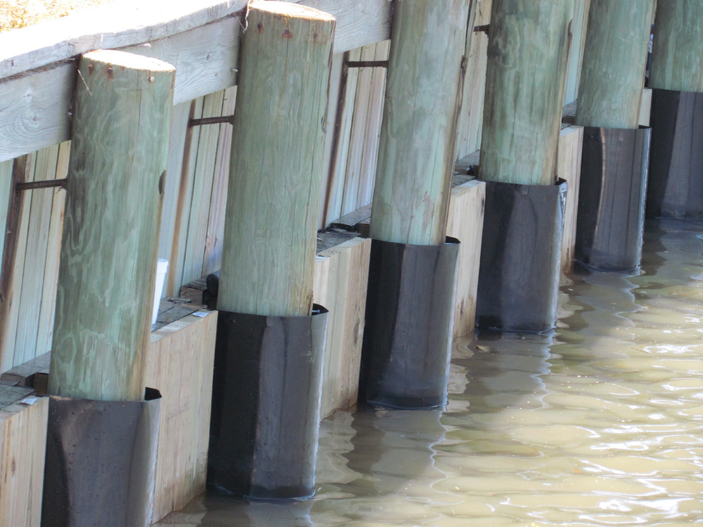 protecting your pilings