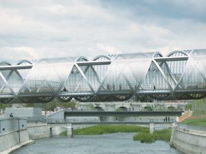 artistic pedestrian bridges